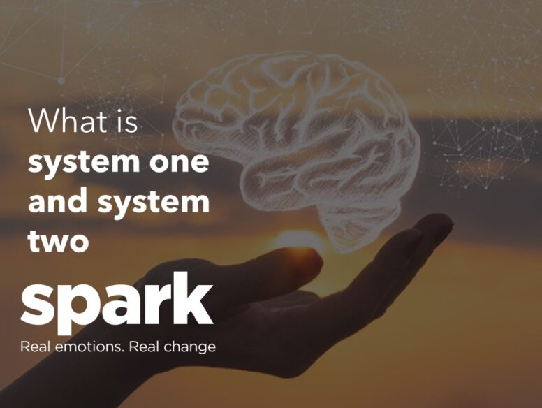 What is system 1 and system 2